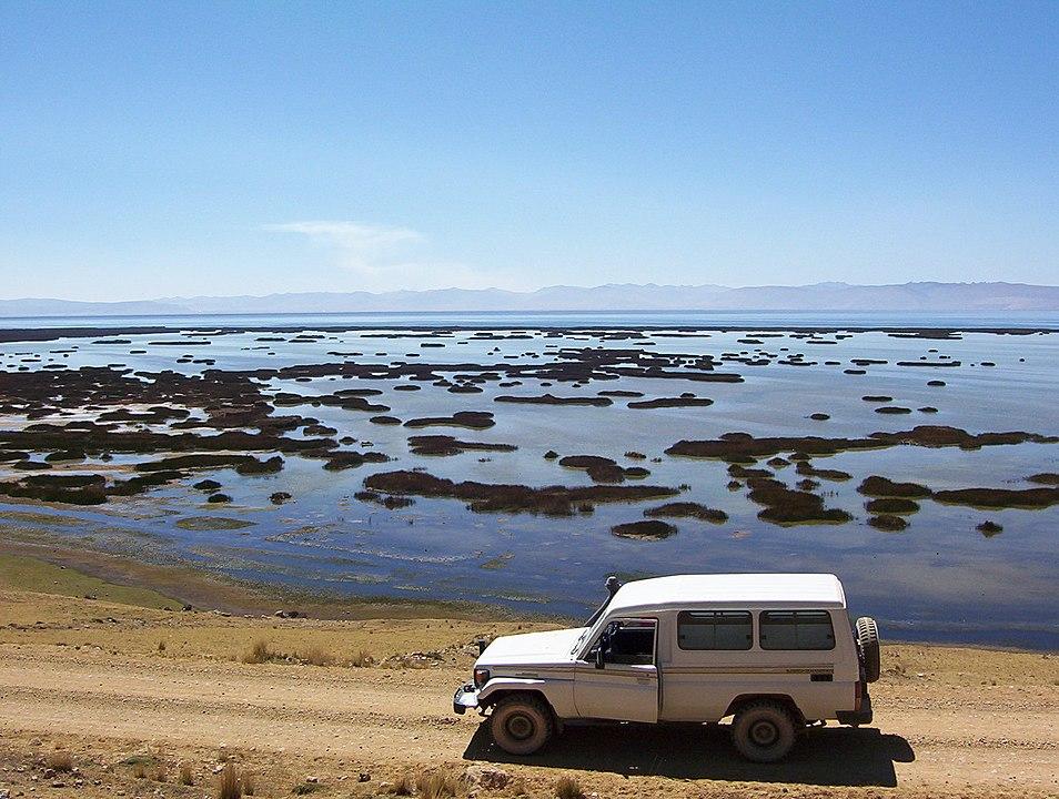 954px-Lago_de_Junin-Juni_Peru.jpg