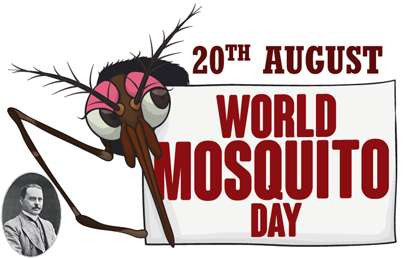 blog__hero--why-celebrate-world-mosquitoe-day.png